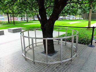 9/11 Memorial i New York - Survivor Tree