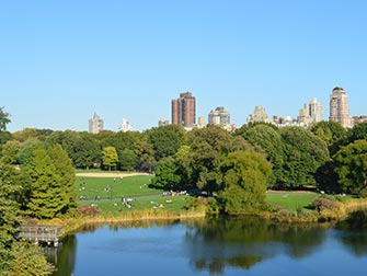 Central Park - Great Lawn
