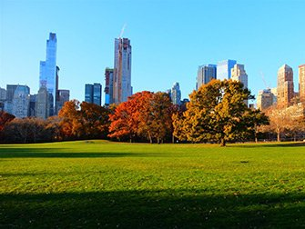 Central Park - Sheep Meadow Hoest