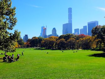 Central Park i New York - Sheep Meadow