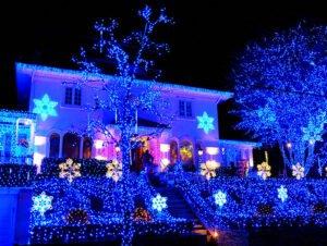 Dyker Heights Christmas Lights - Blålys
