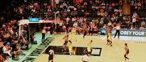 New York Liberty basketball-billetter