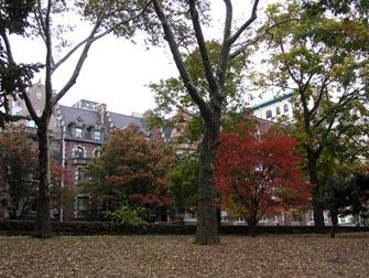 Parker i New York - Høst i Riverside Park
