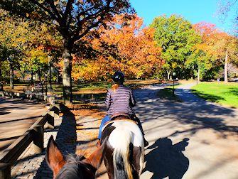 Horseback Riding i Central Park - Stien
