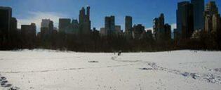 Temperatur i New York